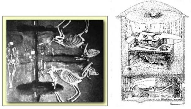 Aryans sacrificed their horses and were buried together. (ancient-wisdom)