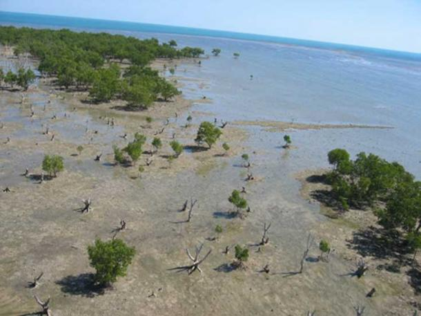 As sea levels rose, Australia was eventually cut off from New Guinea around 8,000 to 10,000 thousand years ago. Corey Bradshaw