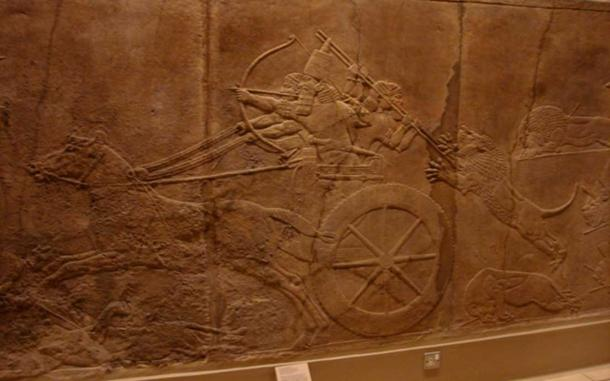 Assyrian chariot, and a royal lion hunt