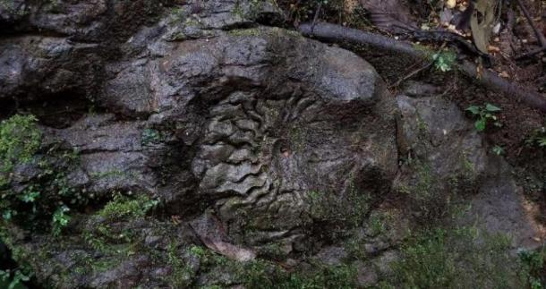 'Atahualpa's crown.'