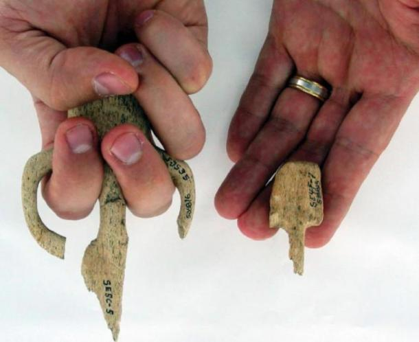 Atlatl hand grips recovered from Par-Tee, highlighting the difference in size between some of the objects. (Losey et al.)