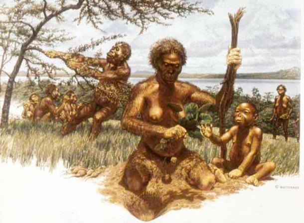 This is an artist's representation of an 'Australopithecus afarensis' family.