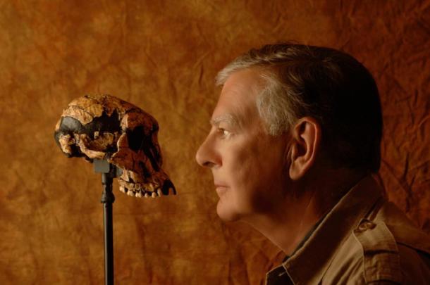 Australopithecus afarensis skull and modern human. (GIFTagger / Public Domain)