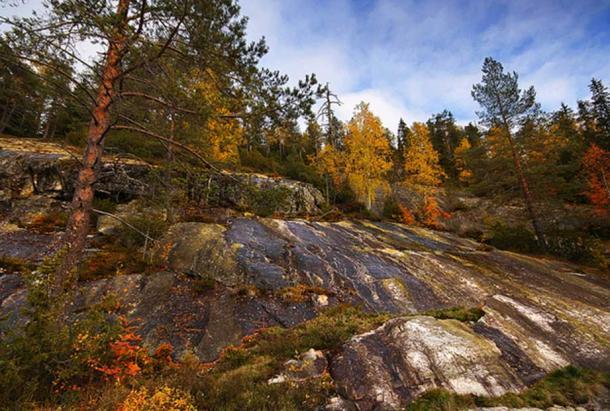 Autumn scenery in Koli National Park. North Karelia region, Finland.