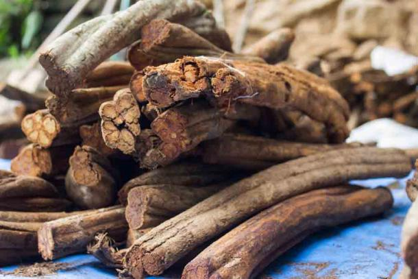 """Ayahuasca is just one """"magically medicinal"""" plant which was consumed by ancient trippers. The new study has found that by analysis of ancient teeth, researchers can discover what kind of drugs were consumed. (artinlumine / Adobe Stock)"""