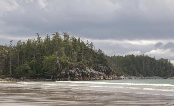 Beach on Calvert Island, British Columbia Coast, Canada