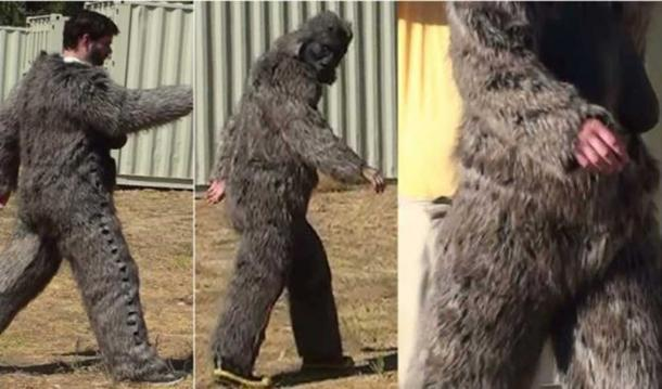 Walking in a Bigfoot costume.