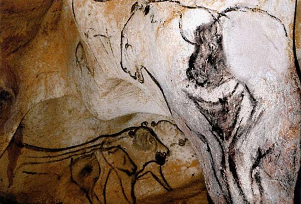 Bison-human and lion-human therianthrope, Grotte Chauvet, France