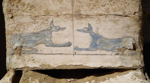 Blue Anubis