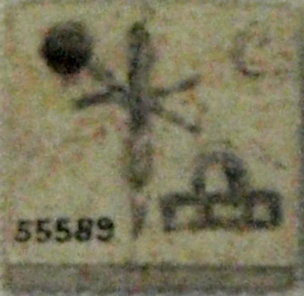 Bone label with name of Queen Neith-Hotep. Originally from Naqada, circa 3100 BC.