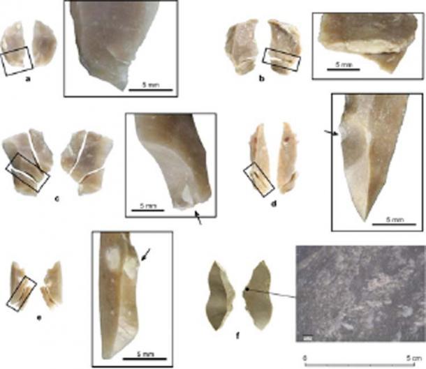 Broken experimental replicas of Uluzzian backed pieces. (Nature Ecology & Evolution)