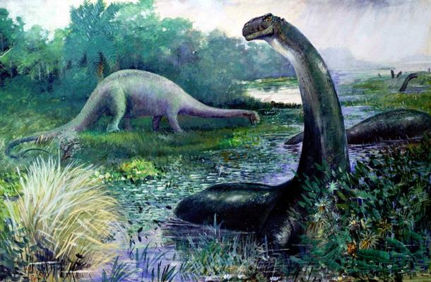 Illustration of Brontosaurus in the water, and Diplodocus on land.