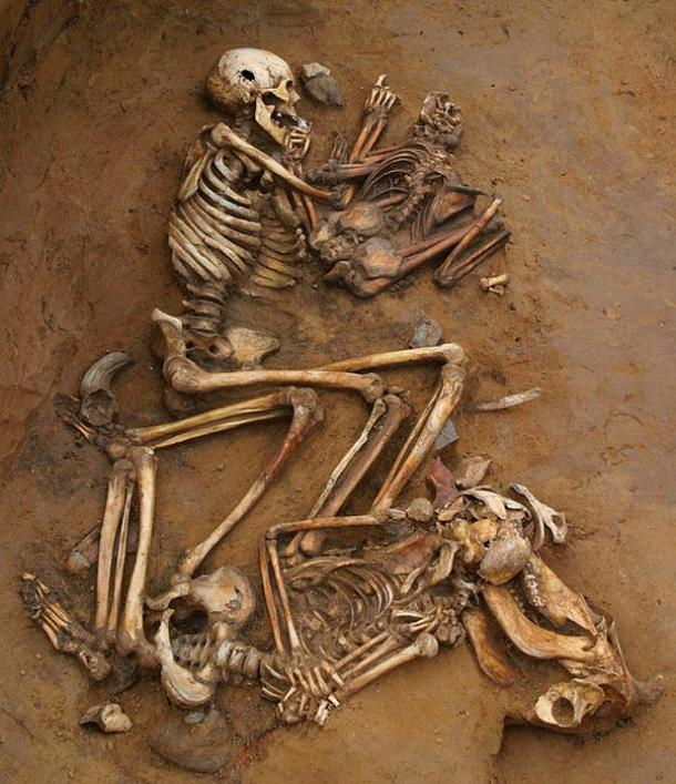Bronze Age skeletons from Cliffs End Farm, Ramsgate, England