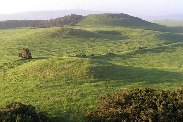 Bronze age round barrows on the ridge of Bronkham Hill, Dorset, UK (CC by SA 3.0).