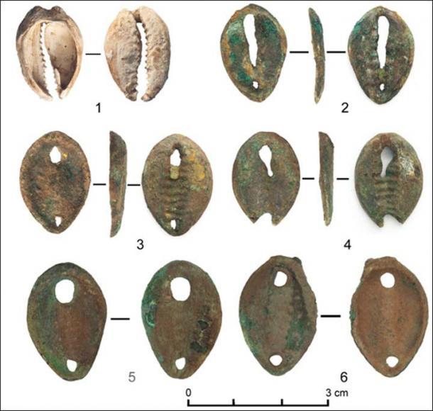 Bronze imitations of cowrie shells. (Siberian Times)