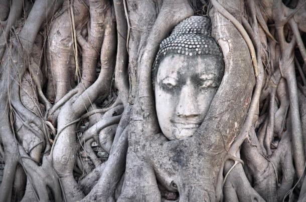 Famous Buddha head in tree roots at Wat Mahathat temple complex, Ayutthaya.