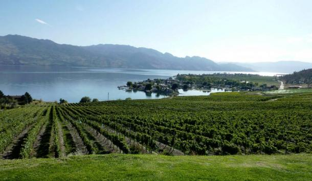 Canadian wine region of the Okanagan Valley in British Columbia.