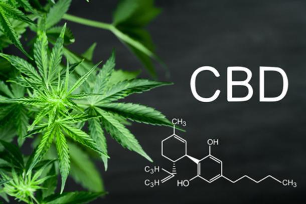 Cannabidiol, CBD, is from the entire cannabis plant. (cendeced / Adobe Stock)