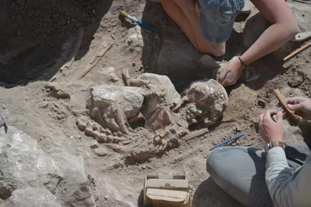 Careful excavation of remains of adult found just outside the industrial room in Gezer