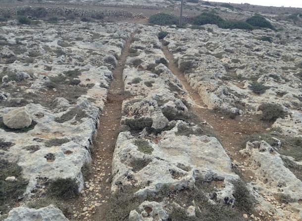 Cart Ruts at Misraћ Gћar il-Kbir, Malta
