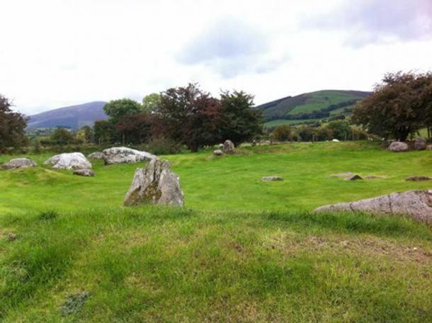 Castleruddery Stone Circle (© David Halpin)