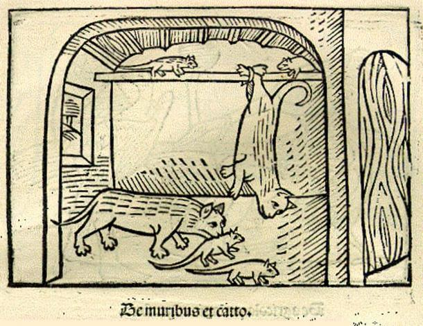 "An illustration of ""The Cat and the Mice"" from a 1501 German edition of Aesop's Fables."