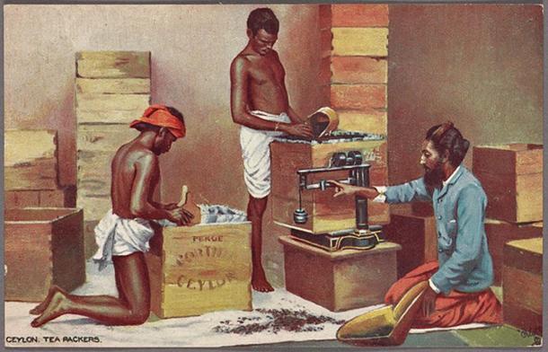 Ceylon tea packers. (Public Domain)