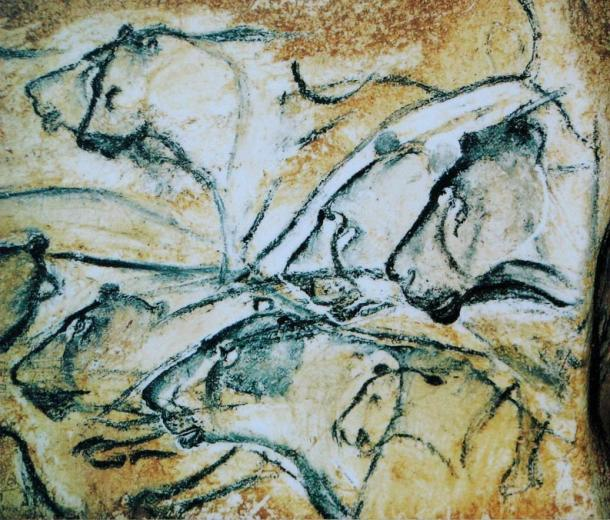 These reproductions of paintings from Chauvet cave are believed to represent lionesses because of the absence of manes. The paintings from Chauvet, unlike many other Stone Age caves in Europe, show predominantly dangerous animals.