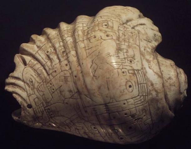 Chavin artifact. Incised Strombus-Shell Trumpet, 400-200 BC