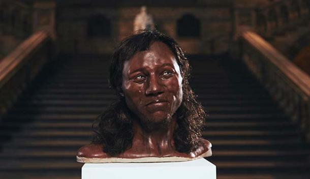 The model of Cheddar Man rendered by Kennis & Kennis Reconstructions (Image: ©Tom Barnes/Channel 4)