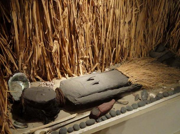 Chinchorro mummy, south coast of Peru or north coast of Chile, 5000-2000 BC - San Diego Museum