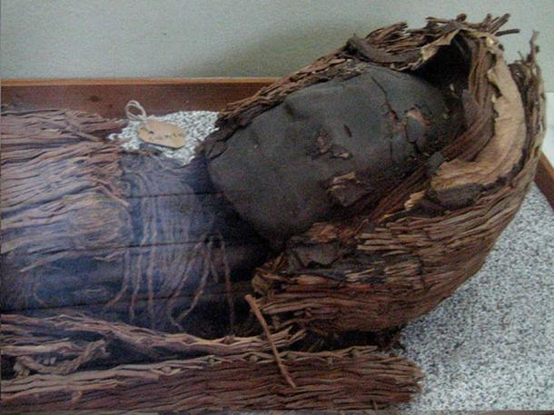Chinchorro mummy, one of the oldest preserved in the world, at the museum in San Miguel de Azapa, Arica, Chile.