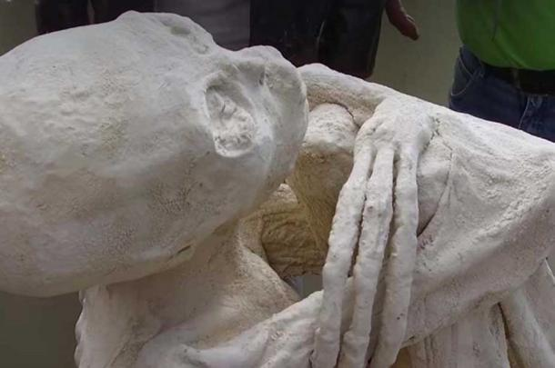 Close up of skull and three, long fingers on the body.