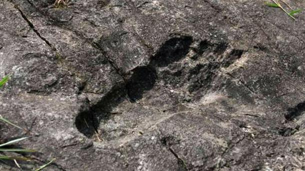 Close up of the alleged giant's footprint.
