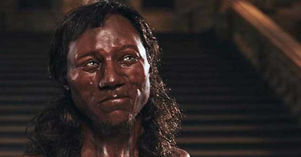 Close up of the model of Cheddar Man rendered by Kennis & Kennis Reconstructions
