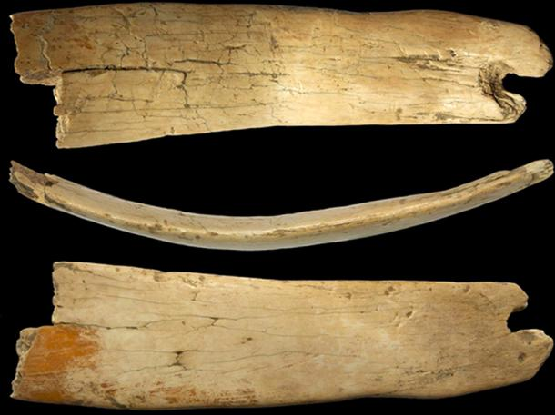 Closer pictures of the woolly mammoth ivory headband. (Novosibirsk Institute of Archeology and Ethnography)
