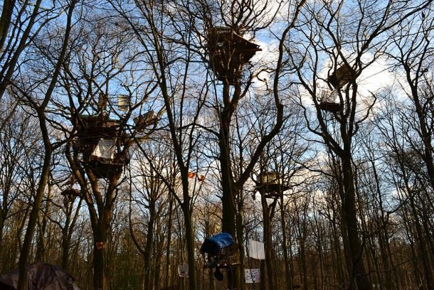 Colony of tree houses in Hambach Forest, February 2018. (CC BY-SA 4.0)