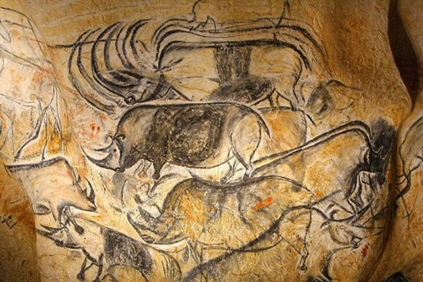 Copy of realistic bison drawings found at Chauvet Cave.. (CC BY-SA 4.0)