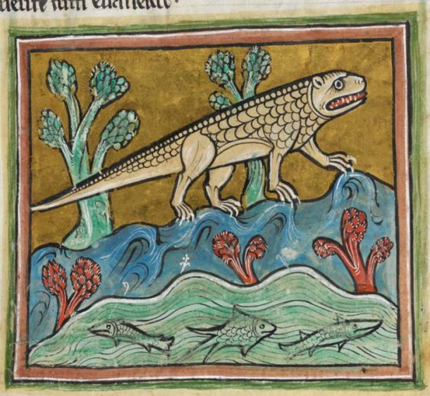 Crocodile in the Medieval Bestiary Rochester.