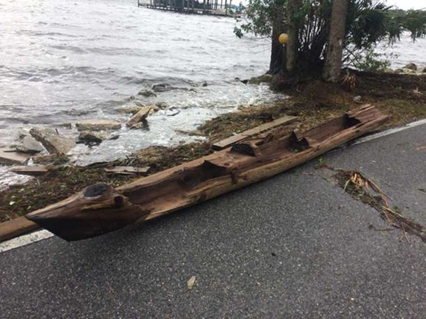 Cypress Dugout canoe found by Randy Lathrop by the Indian River after Hurricane Irma.