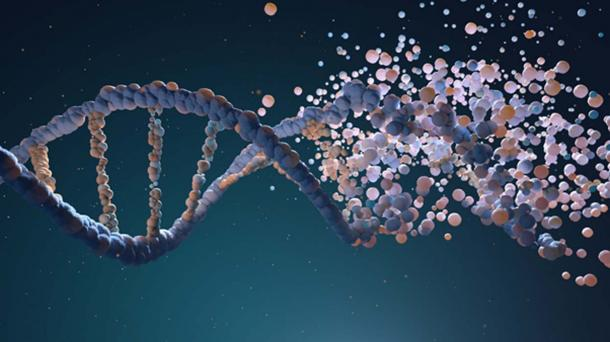 DNA strand assembling from different elements. (Tatiana Shepeleva / Adobe)