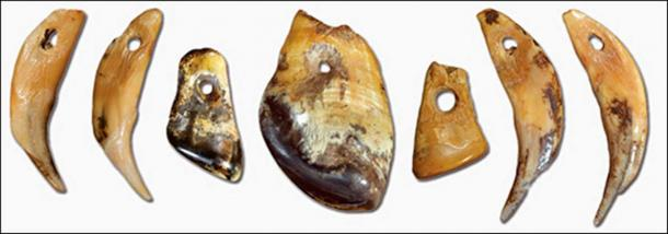Denisovan necklaces and pendants. Pictures: Mikhail Shunkov, The Siberian Times