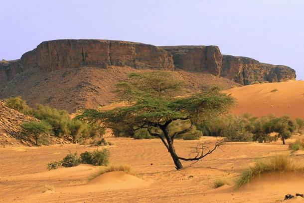 Desert scenes are characteristic of the Mauritanian landscape, where the stolen stones and fossils originated