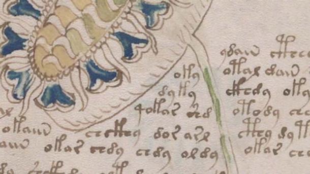 Detail of a page in Folio 33-V of the Voynich Manuscript. (Gigazine)