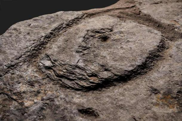 Detail view of a deeply pitted oval motif with a cup in its center. The picketing technique produces splintering of the shale, forming halos around the patterns. (Denis Glicksman / Inrap)