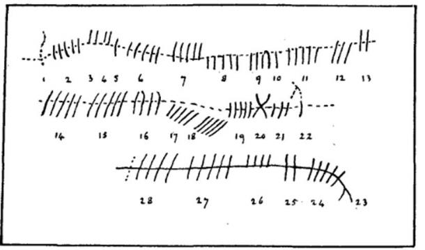 Diagram of Ogham Inscription—Newton Stone. (The Right Hon. Earl of Southesk)