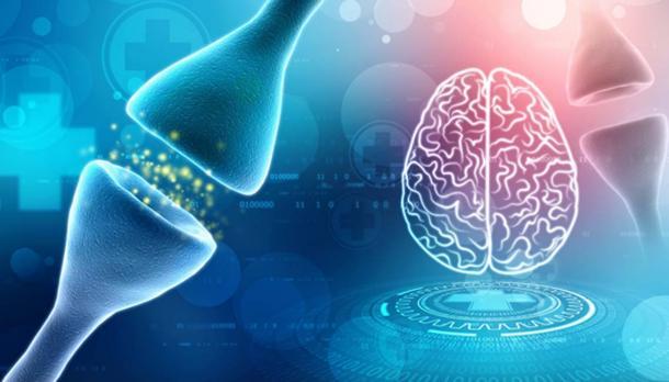 Digital illustration of Synapse in medical background. (blackboard / Adobe)