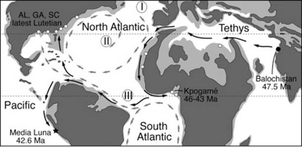 Distribution of Protocetid Whales during the Middle Eocene, the period of the ancient whale. (G. Bianucci / Cell Press/Fair Use)