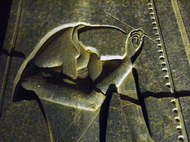 Djehuty (Thoth) in the Luxor Temple by night. (CC BY-NC 2.0)