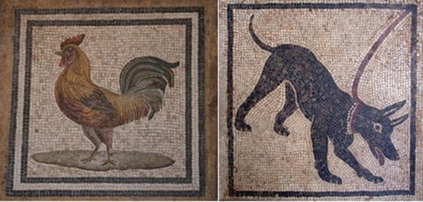 Dog mosaic, cockerel mosaic, (Public Domain)
